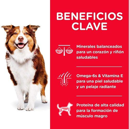 Hill's Science Diet Canine Adult 7+ Active Longevity