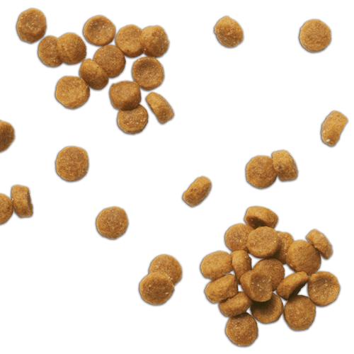 Hill's Prescription Diet Feline C/D Multicare