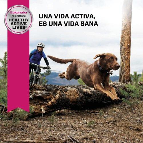 Eukanuba Canine Adulto Razas Grandes (LB) 15 kg