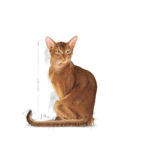 Royal Canin Feline Selective Savor Sensation 2.7 kg