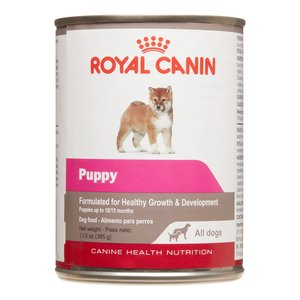 Royal Canin Canine Wet Puppy All Dogs 385g
