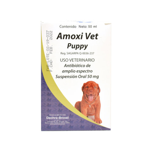Laboratorio Brovel Amoxivet Puppy Suspensión 50 ml