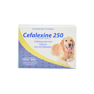 Laboratorio Brovel Cefalexine 250 mg 20 Pza.