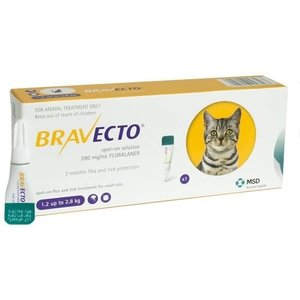 Laboratorio MSD Bravecto Spot On Cat 112.5 mg