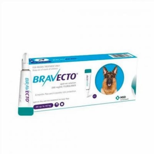 Laboratorio MSD Bravecto Spot On 1000 mg
