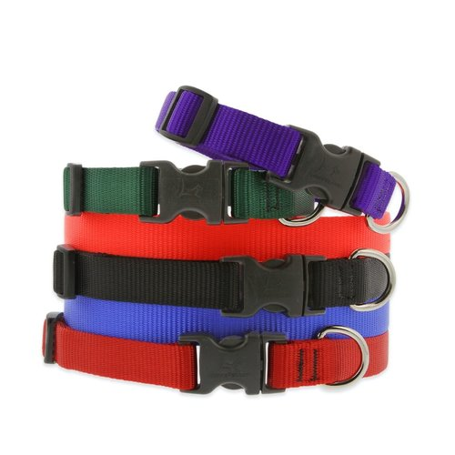 Lupine Pet Collar Basic Solids