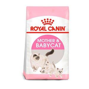Royal Canin Feline Gatas Gestantes y Gatitos 1.5 kg