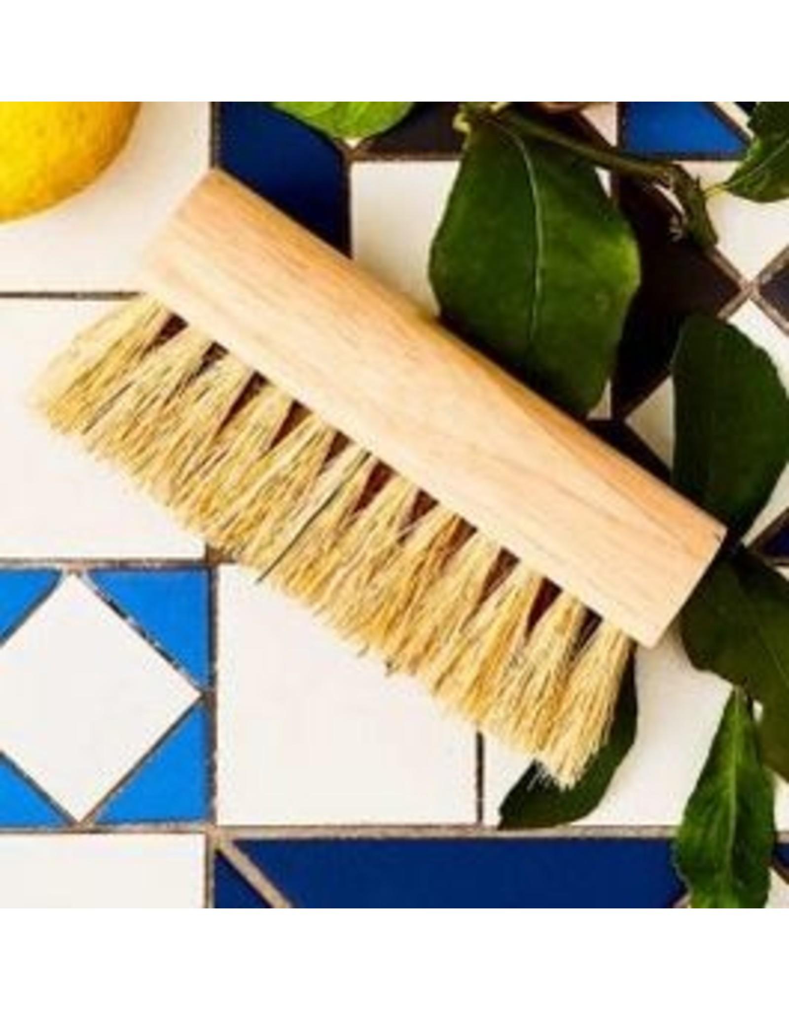 Eco Max Scrubbing Brush