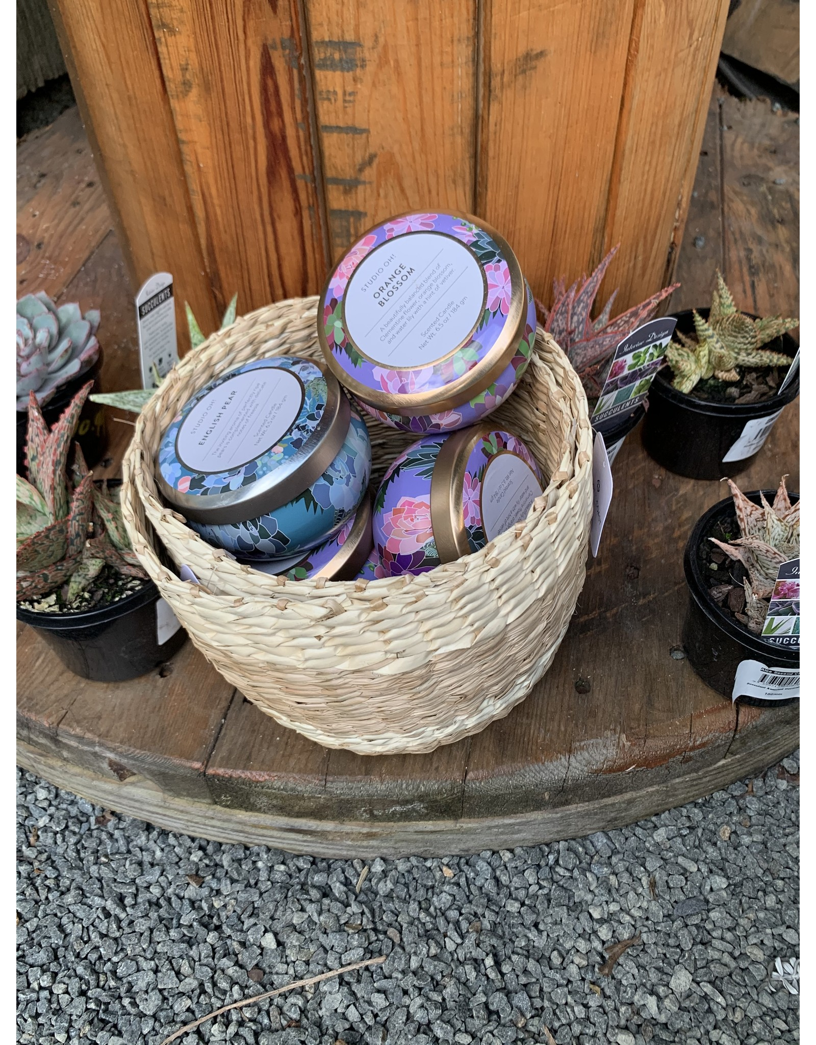 Travel Tin Scented Candles