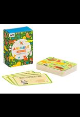 Animal Trivia Cards