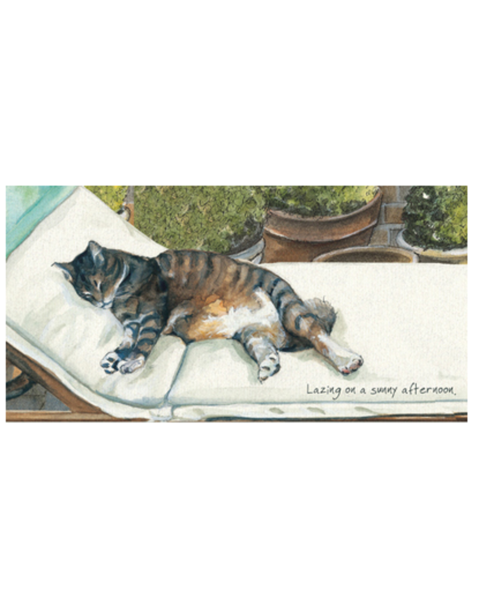 Watercolour Pet Celebrations Cards