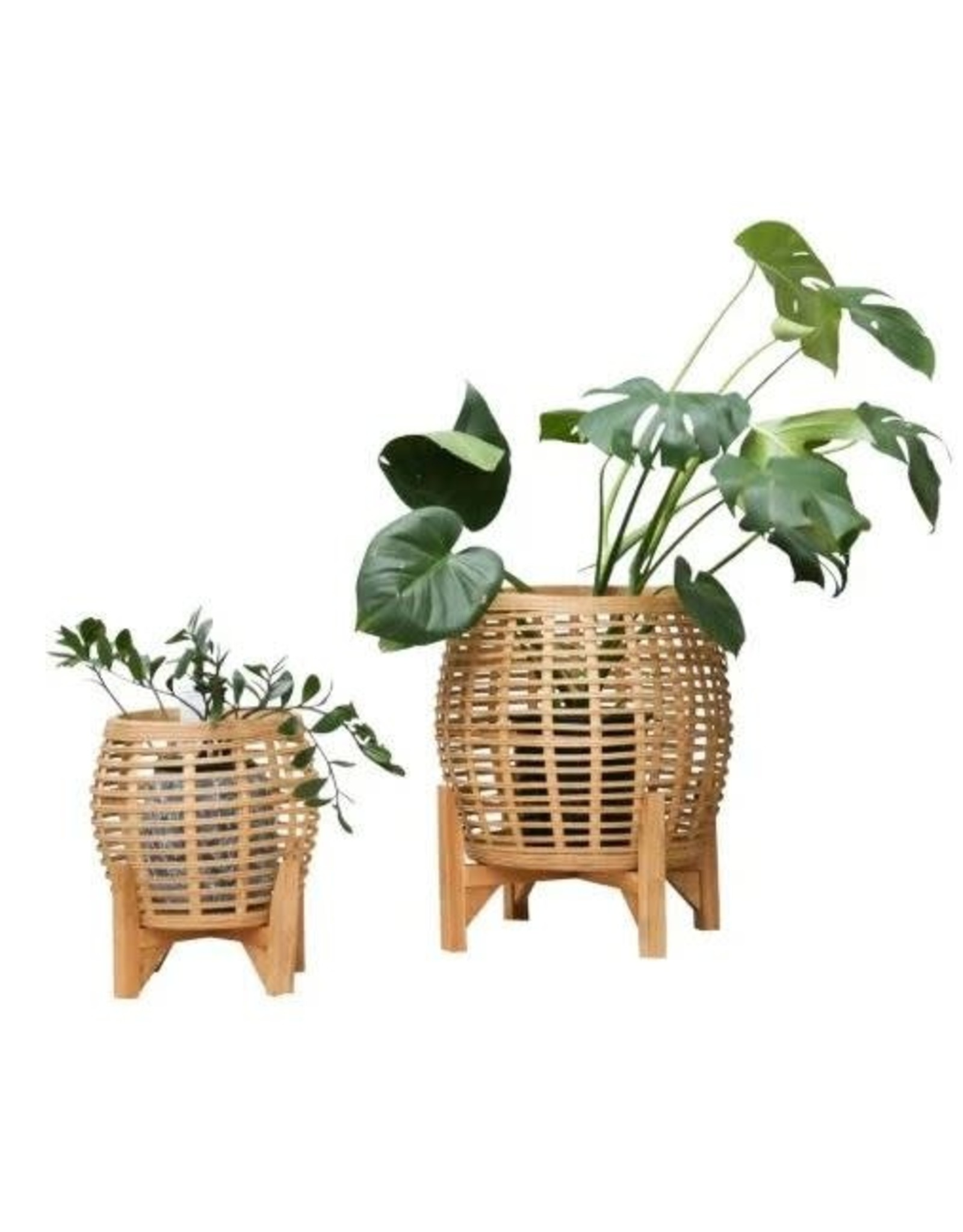 Whittaker Natural Bamboo Planters