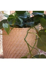 Pacifica Rattan Whitewash Planters