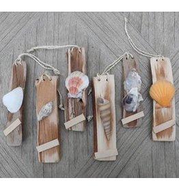Seashell Name Cards Set of 6 mixed