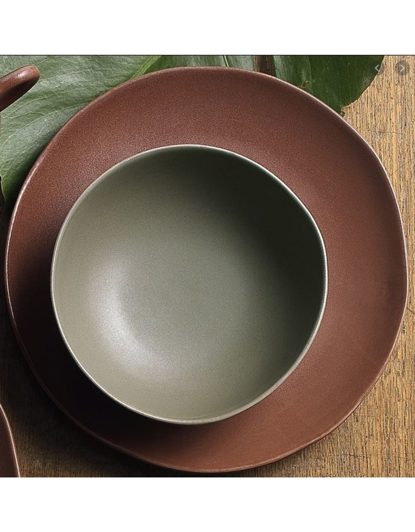 Ecology Sahara Bowl Palm 18cm
