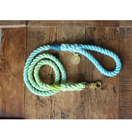 Ted & Patrick Tallebudgera Dog Lead with Brass Fittings