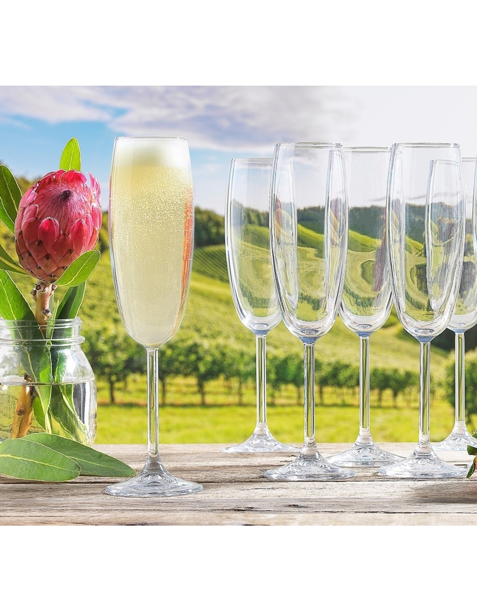 Ecology Otto Champagne Glasses 222ml (Set 8)