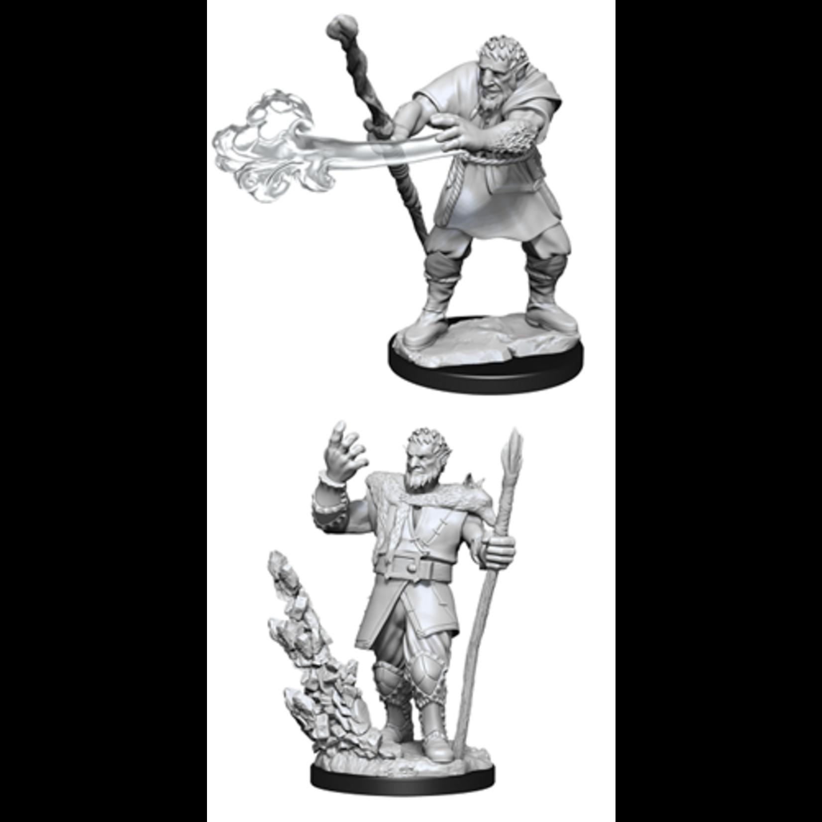 Firbolg Druid Male