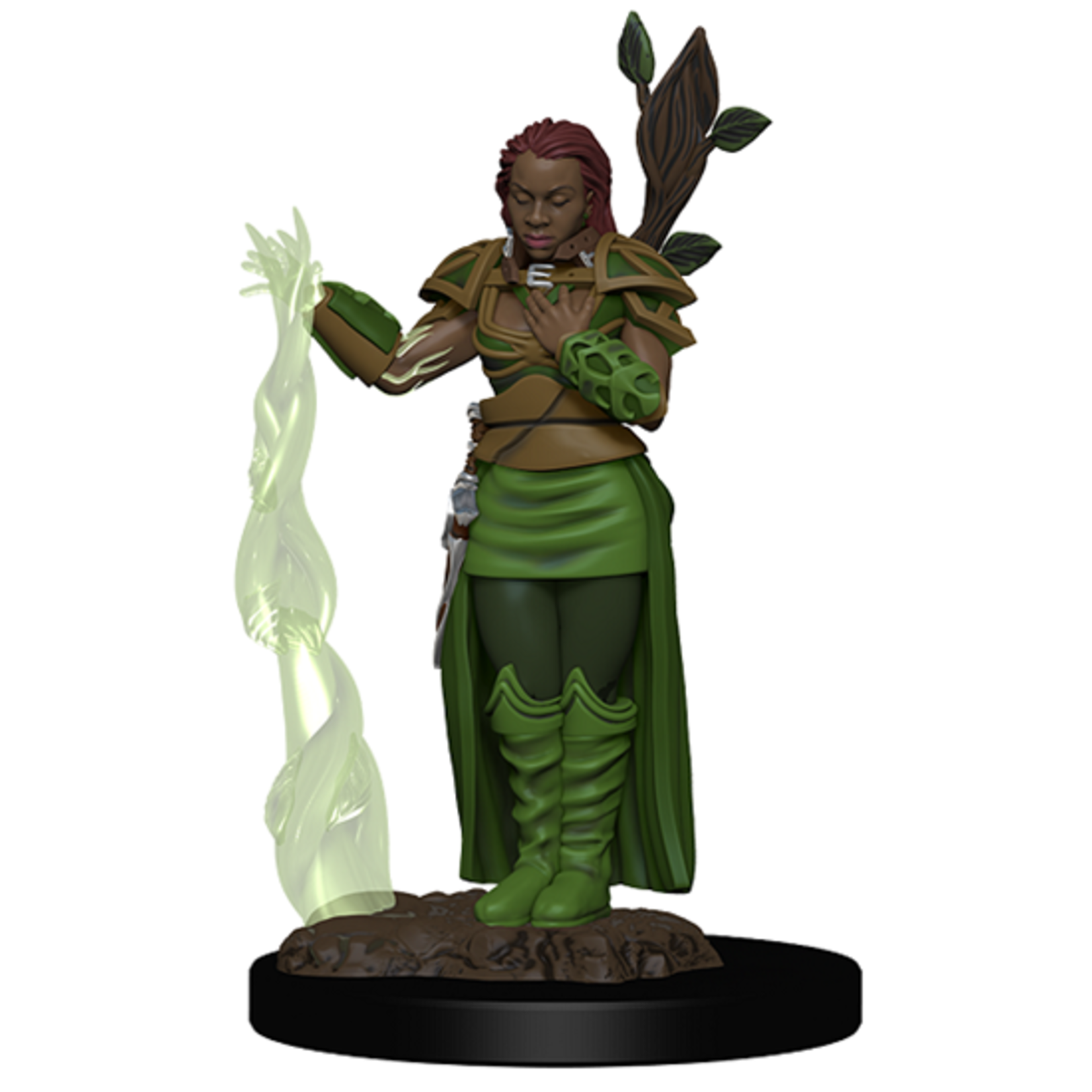 Icon of the Realms: Human Druid