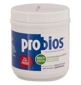 Probios Powder 240 gram Jar