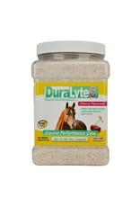 Durvet Dura Lyte Electrolyte Supplement