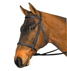 Wintec Bridle Synthetic