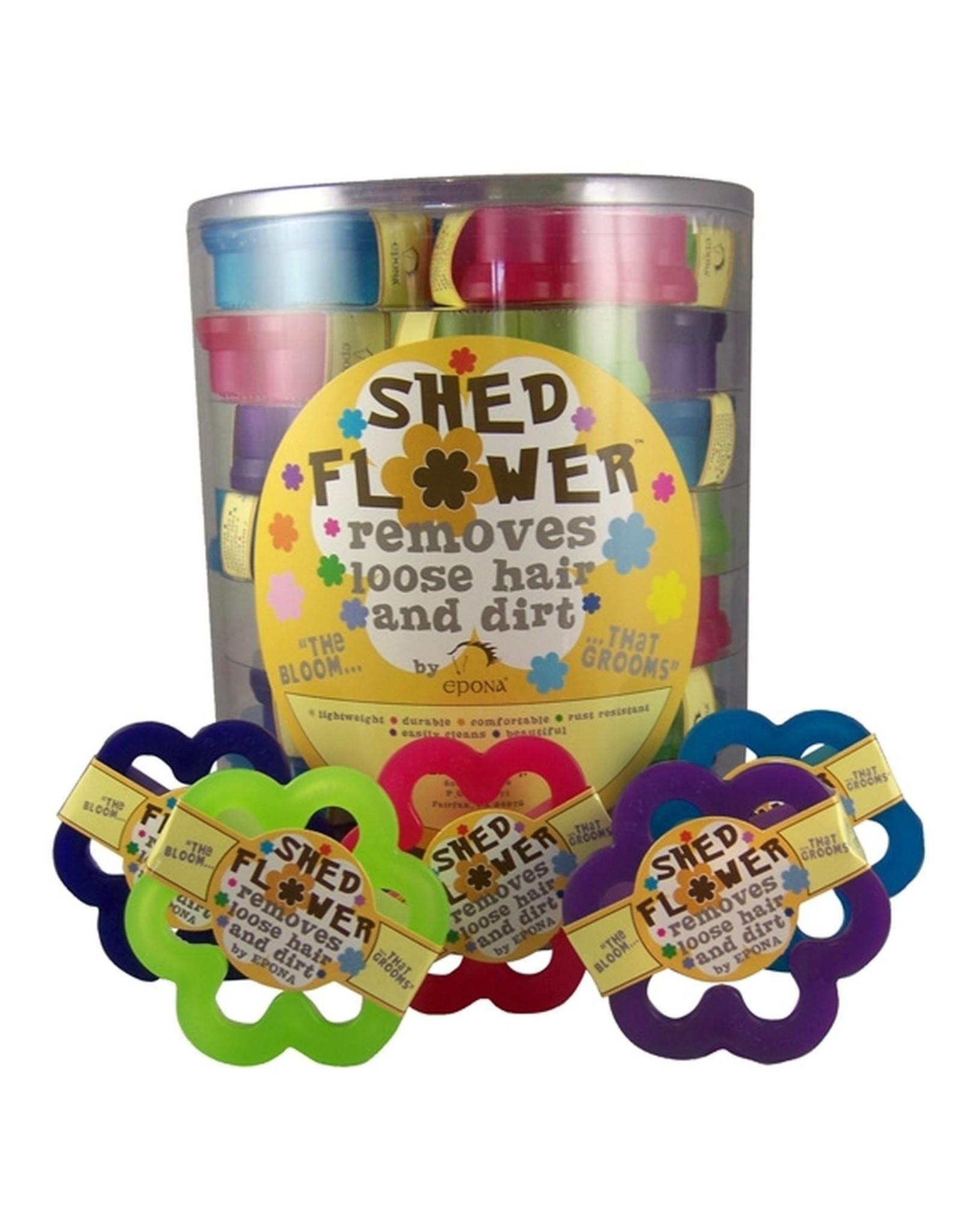 Shed Flower Purple