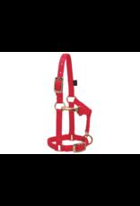 "Weaver Adjustable Nylon Mini/Suckling Halter 5/8"" - 3/4"""