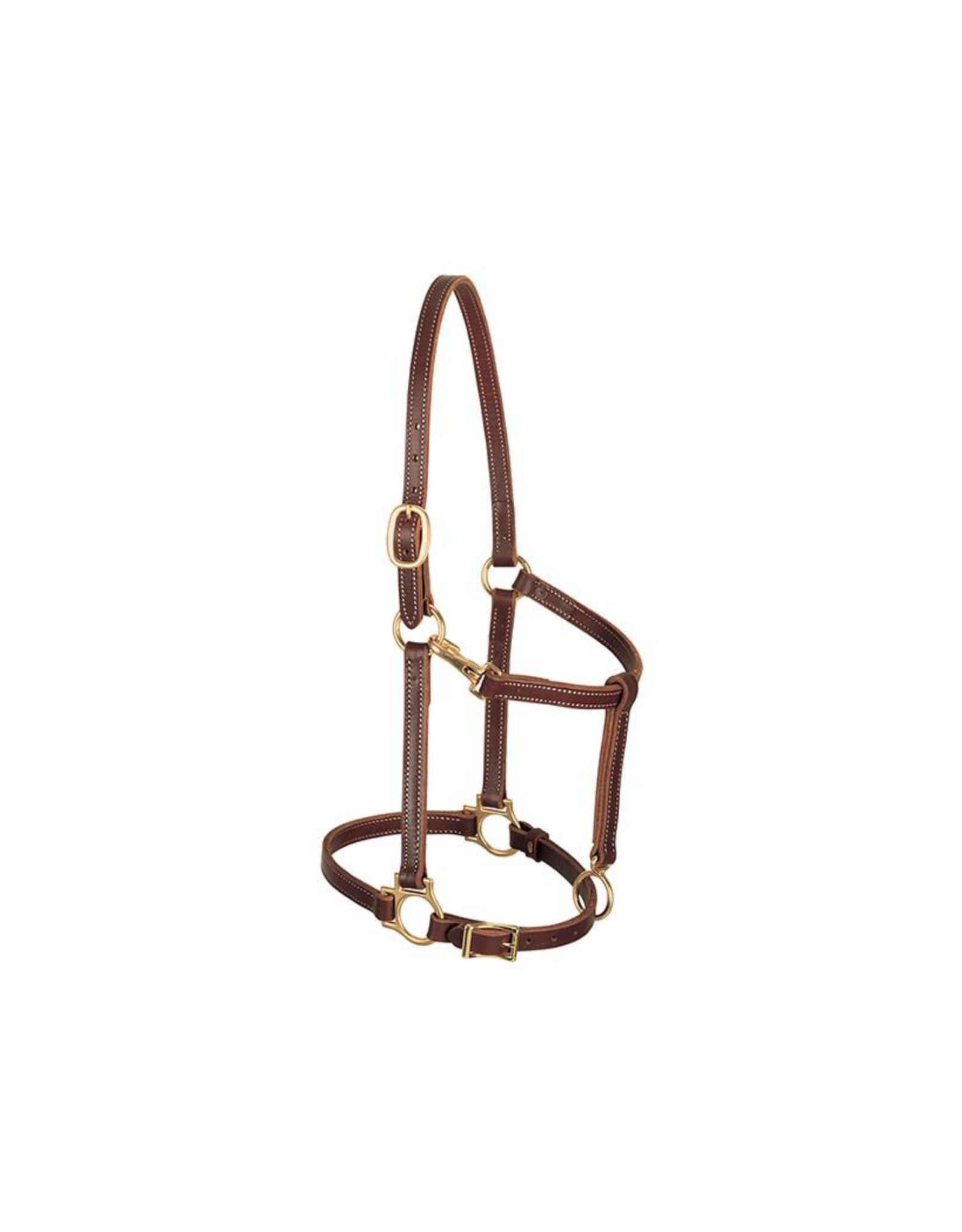 Leather Horse Track Halter