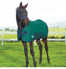 Blanket WB Foal/Mini 1200D 220g 42""