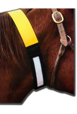 Horse ID Collar