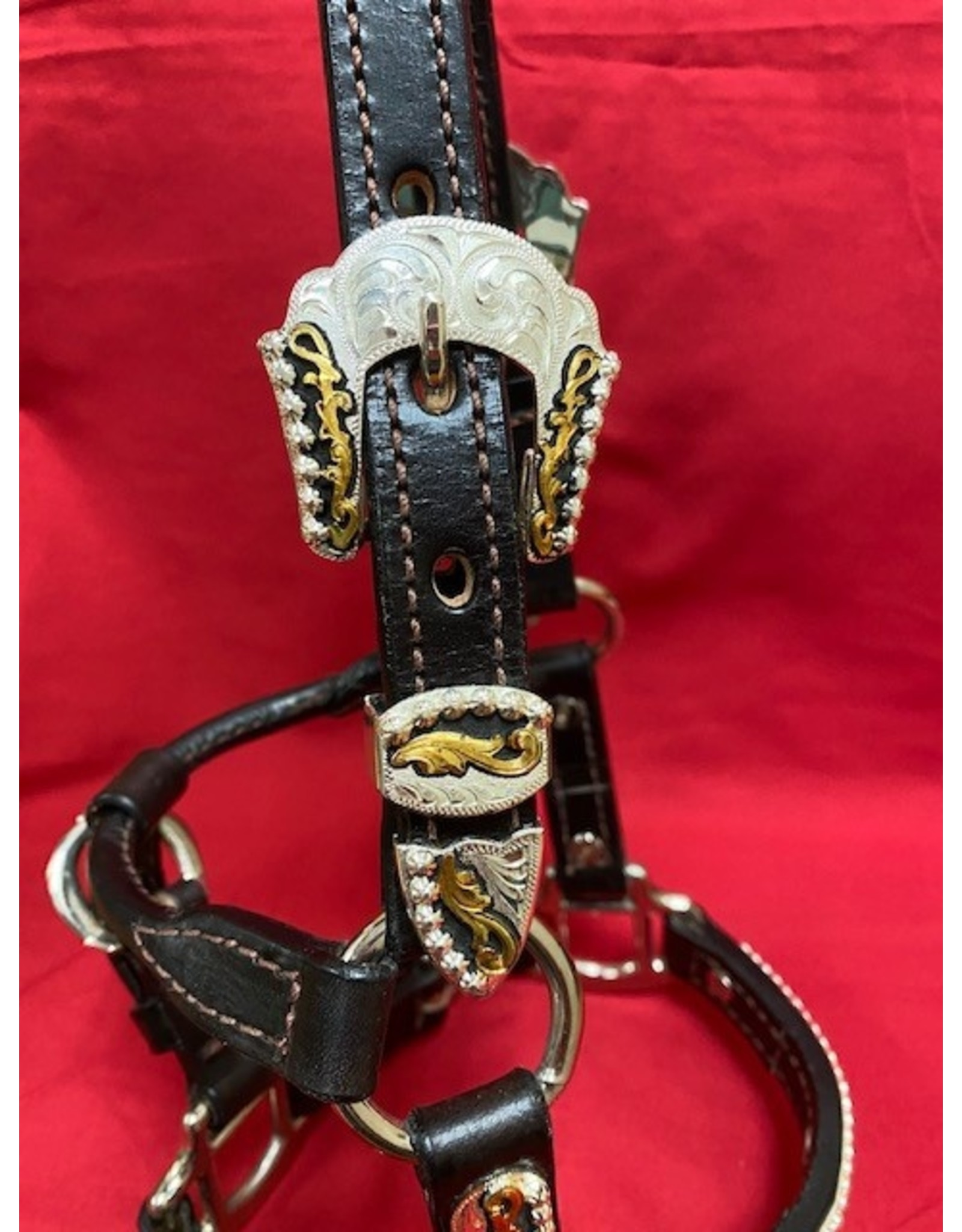 Billy Royal Mini Show Halter