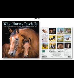 2021 Calendar, What Horses Teach Us