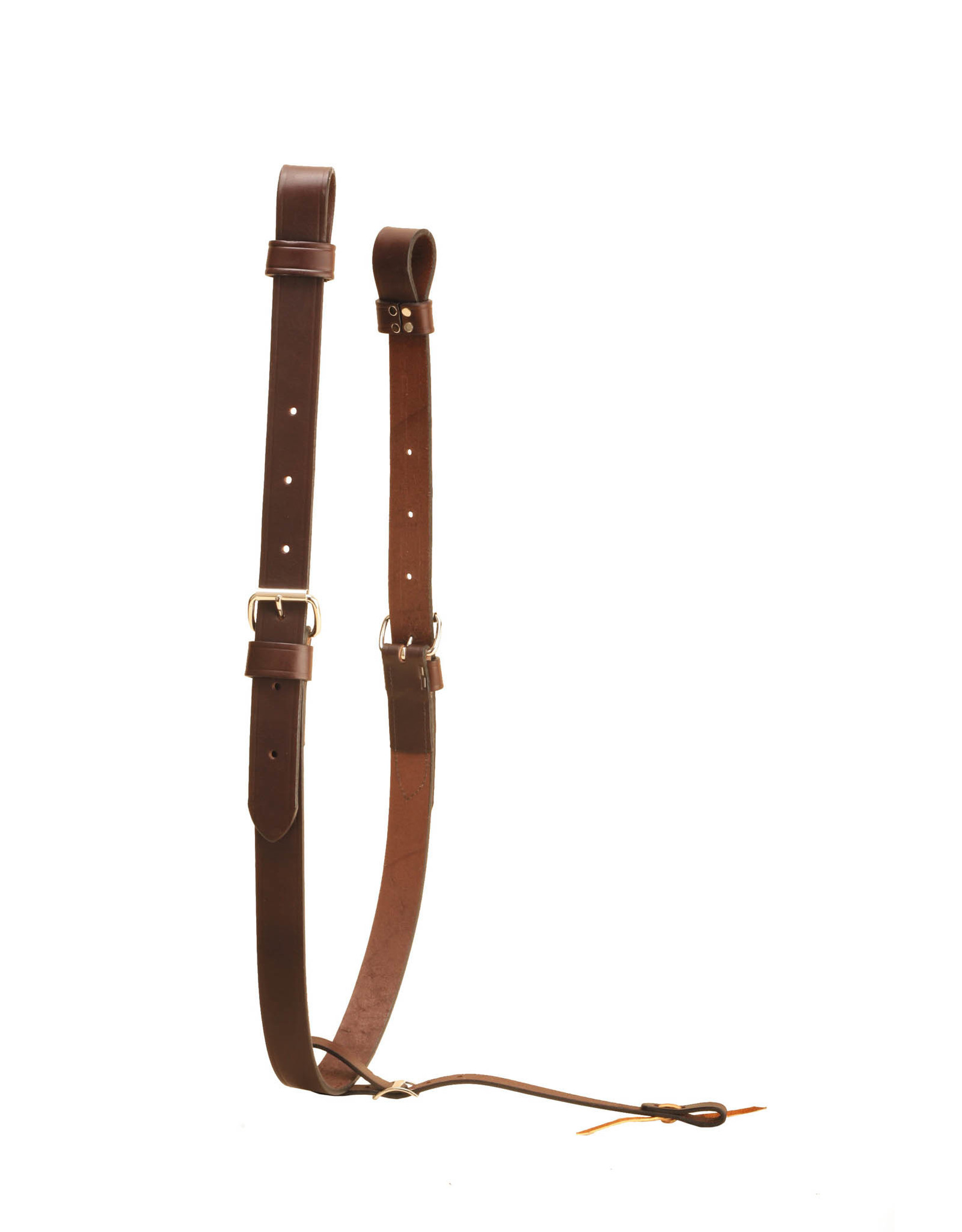 Tory Leather Cinch, Rear Flank Complete