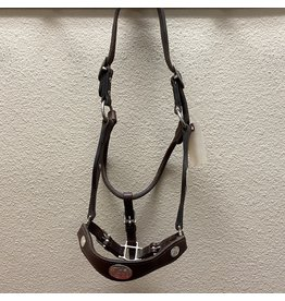Champion Turf Leather Show Halter w/ Silver