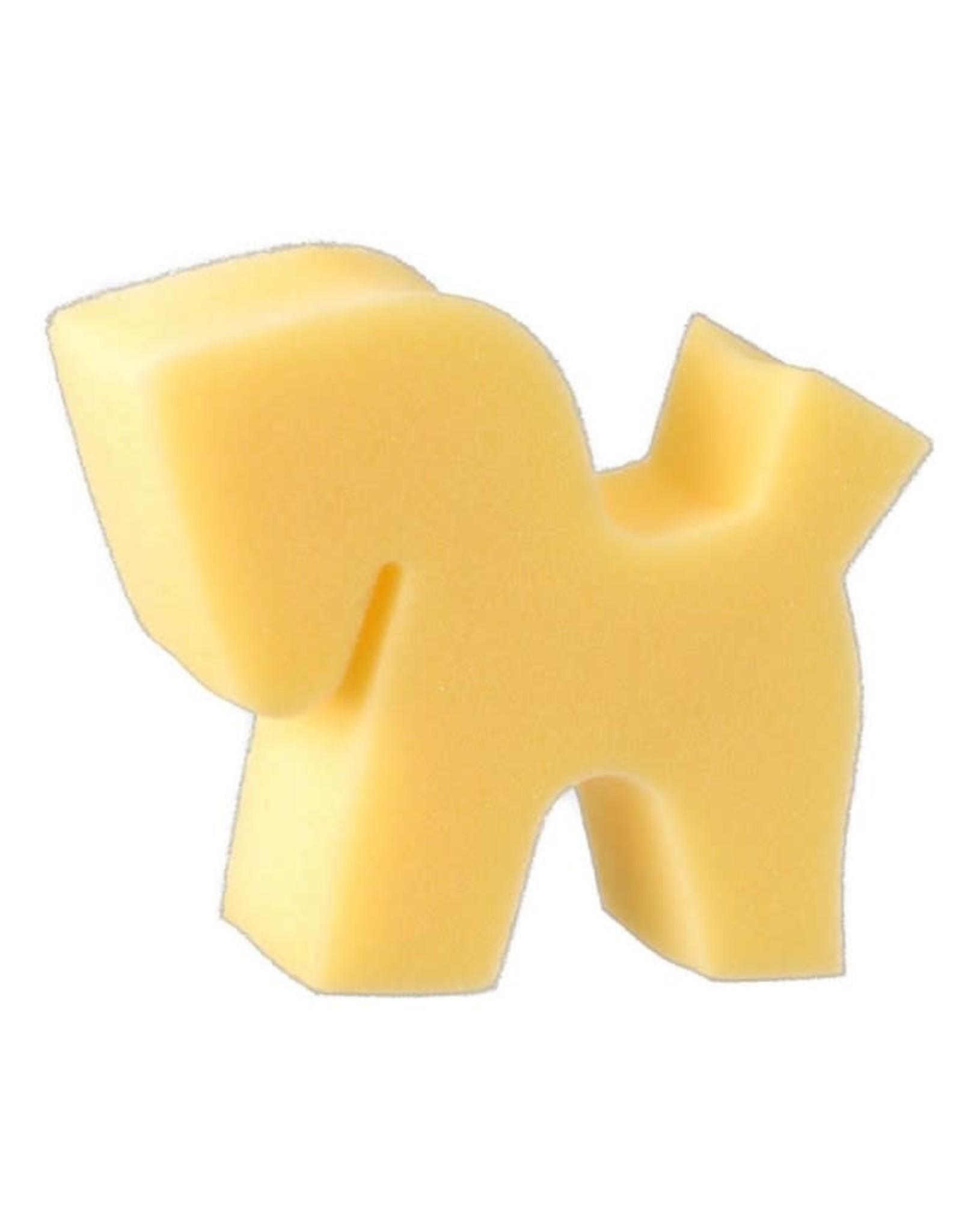 Sponge Horse Head