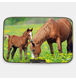 Armored Wallet Bay with Foal