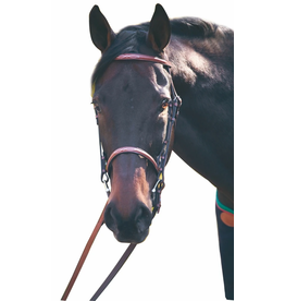 Advantage Fancy Raised Snaffle Bridle With Laced Reins