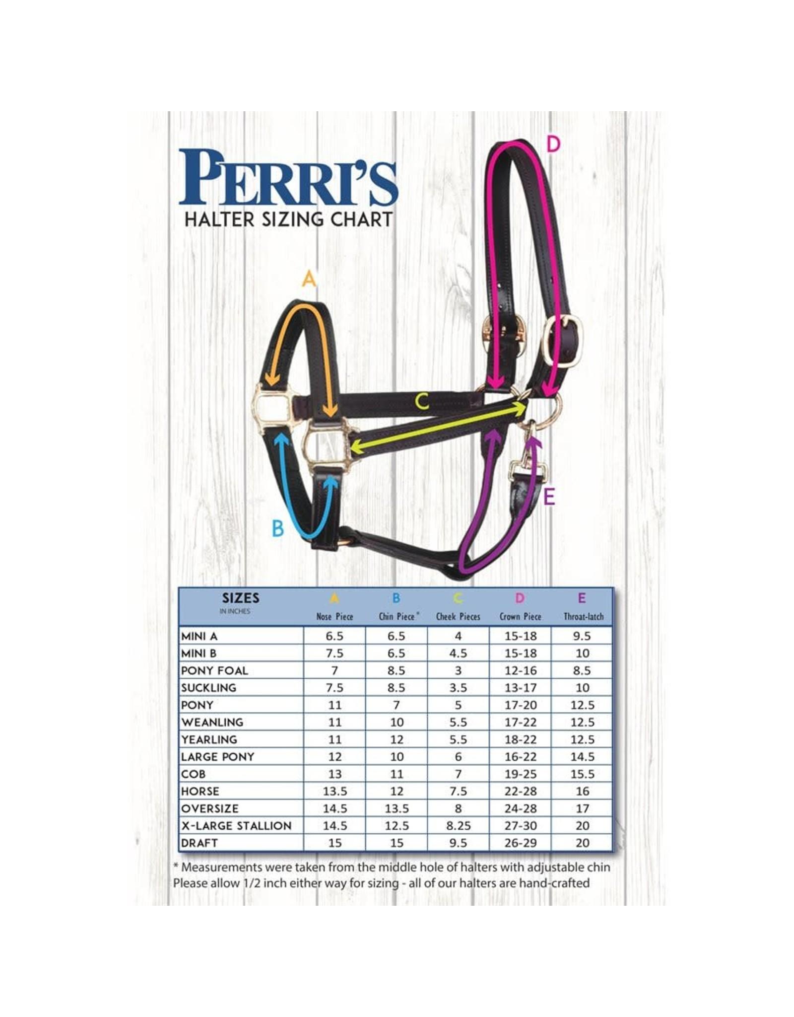 Perri's Halter Leather Black Padded Blue Pearl Bling Stainless Steel