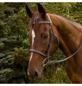 Advantage Fancy Raised Padded Bridle With Laced Reins