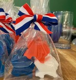 July 4th Texas Guest Gift Bag- Red White & Blue