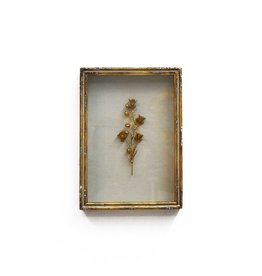 """Bliss Studio Framed Rampion Bell Flower in Gold (11.5""""H x 2""""D x 8.25""""W)"""