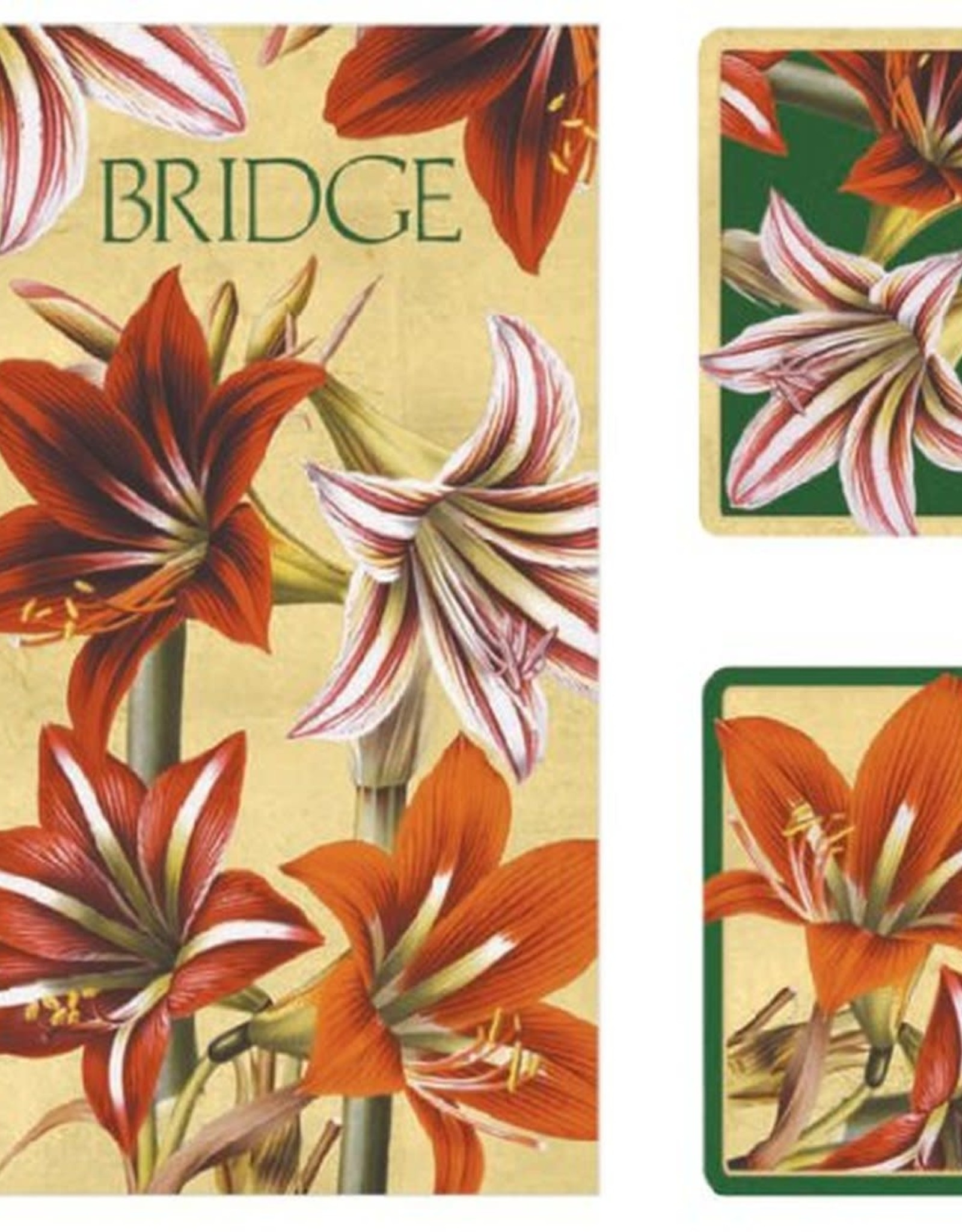 Caspari Amaryllis Gift Set - Cards and Score Pads
