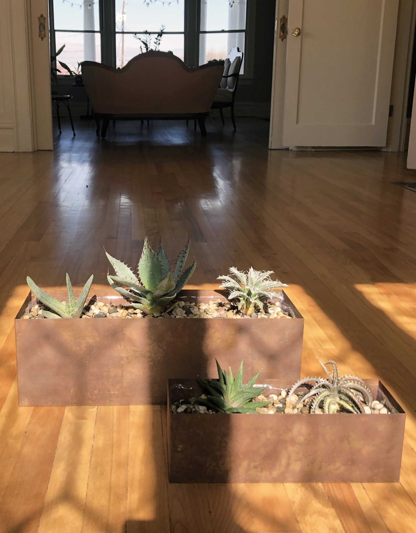 Curio Rust Metal Planter with 2 x Agave & 1 Gasteria