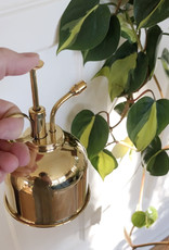 Curio Brass Plant Mister