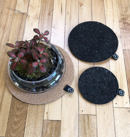 Curio Wool and Cork Plant Trivet Set