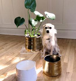 Curio Perfect Pot, matte gold