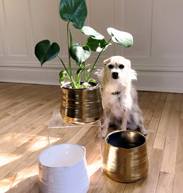 Curio Perfect Pot, white gloss