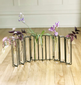 Curio Test Tube Vase Collection