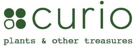 Curio Concept